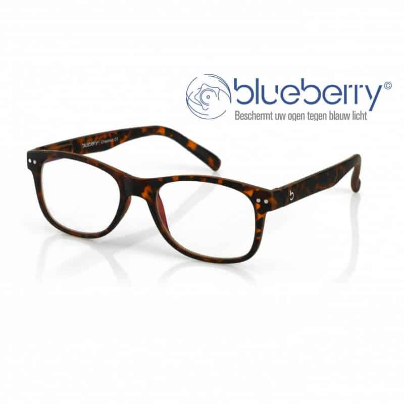 Blueberry Model L – Tortoise
