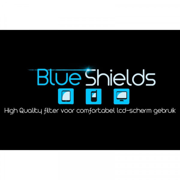 BlueShields City TFB300